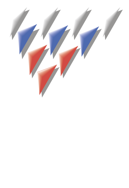 РАФ2010-(1).png